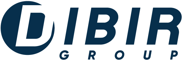 Dibir Group Srl: mixing and blending technologies